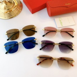 Cartier(カルティエ) ct0211s サングラス ASS050169 Updated in 2020.09.30